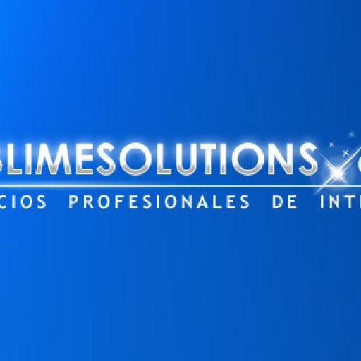 Servicios profesionales de internet